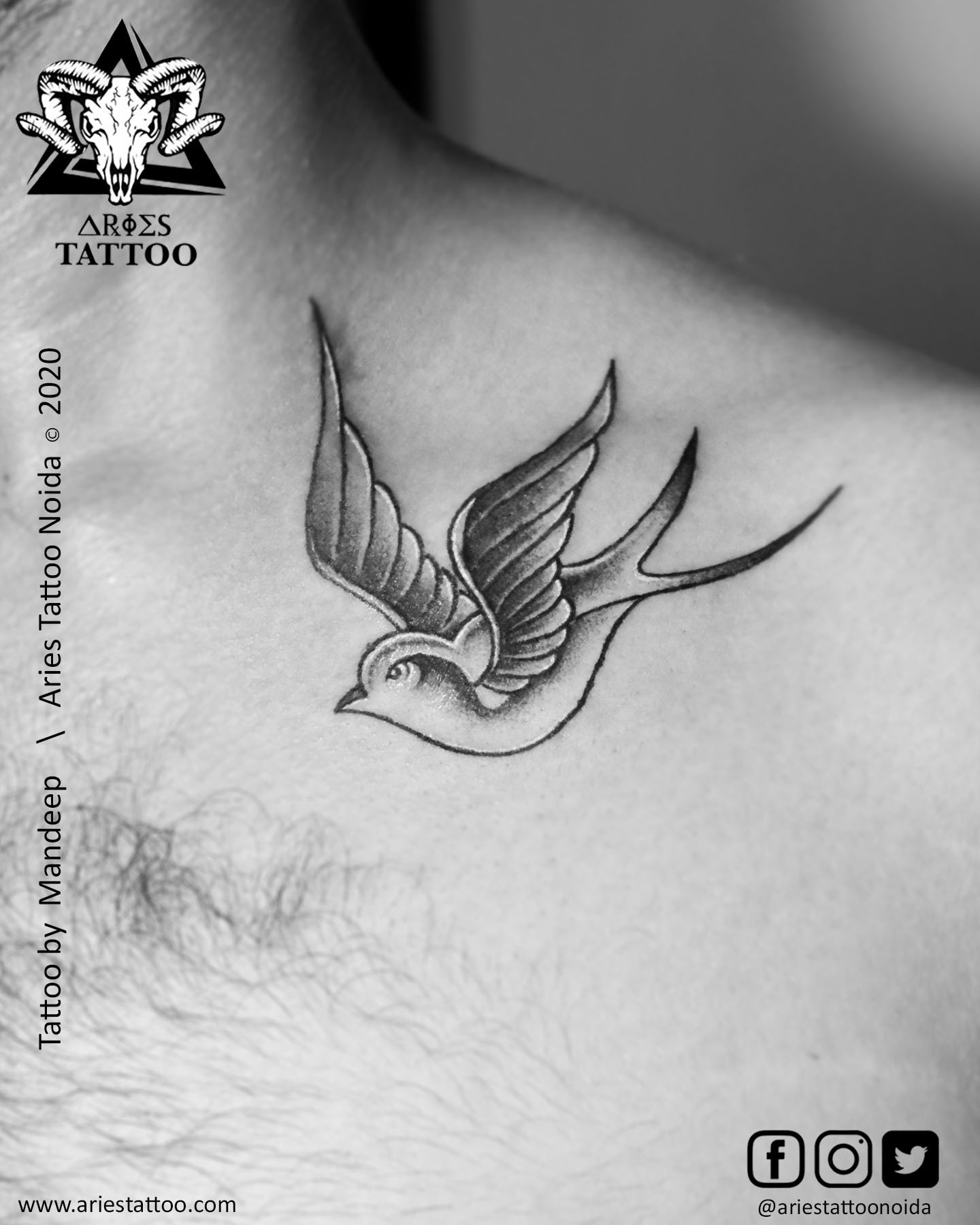 Sparrow tattoo_mandeep_ariestattoonoida| |Aries Tattoo Noida | Tattoo Shop and Studio In Noida